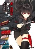 LN - Volume 5