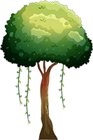File:Forest 11.png