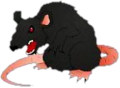 Shadow Rat.png