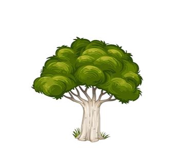File:Forest 20.png
