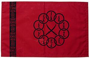 Ten Rings Flag.jpg