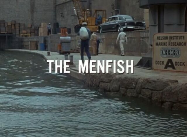 File:Themenfish.jpg