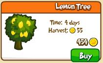 Lemon tree shop
