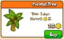 Coconut tree shop