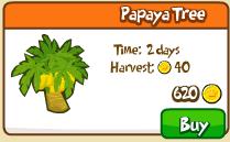Papaya tree shop