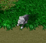 File:Wolf Pup.png