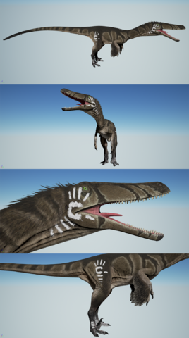 File:Austroraptor Tribal Markings Set 1 The Isle.png