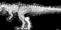 Hyperendocrin Carnotaurus