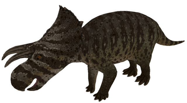 File:Avaceratops The Isle.png