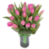DutchTulips