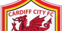 Cardiff City (2014-15 home)