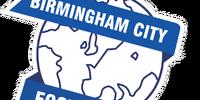 Birmingham City (2014-15 home)