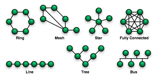 File:NetworkTopologies.png