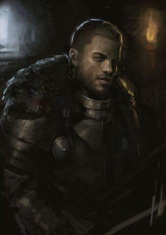 File:Knight in the dark by beaver skin-d68cssw.jpg
