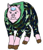 Chanon saiwiali animal pig