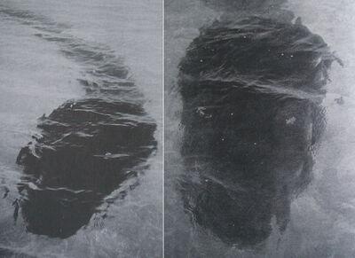 I-31030919da4e383ce2968d4fb83fcf13-Hook Island composite