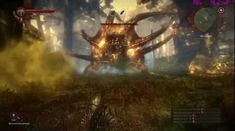 The Witcher 2 Defeating Kayran (GTX 460)