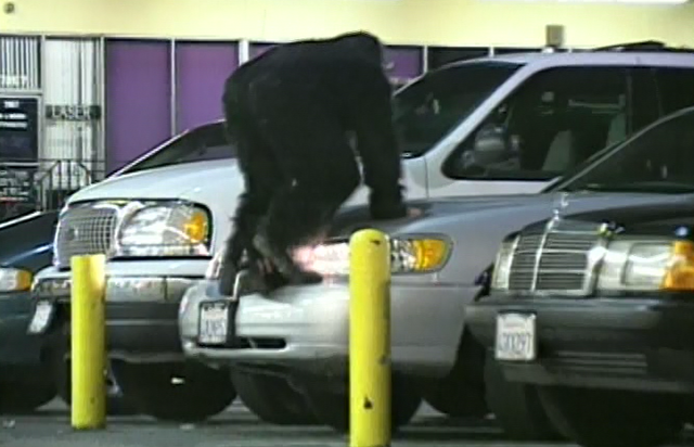 File:Night monkey car alarms.png