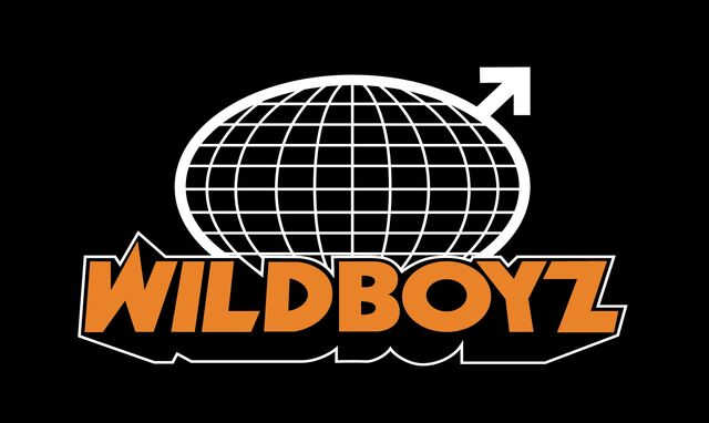 File:Wildboyz logo large.jpg