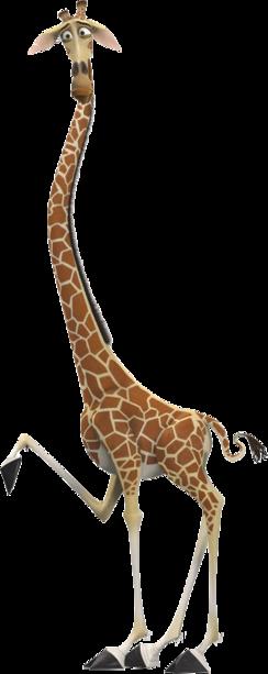 Giraf08