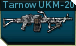 File:Pkm p icon.png