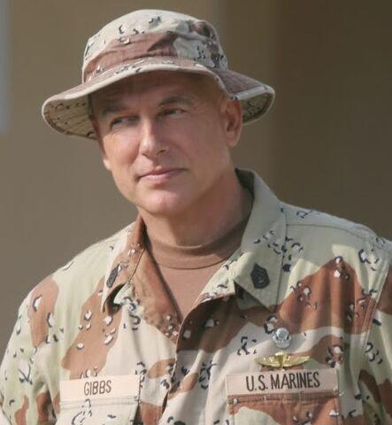 File:Leroy Jethro Gibbs in uniform.jpg