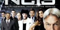 Season 9 (NCIS)