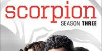 Season 3 (Scorpion)