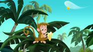 Monkey-Invisible Jake04