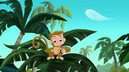 Monkey-Invisible Jake03