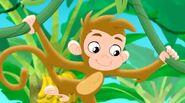 Monkey-Captain Hook's Parrot03