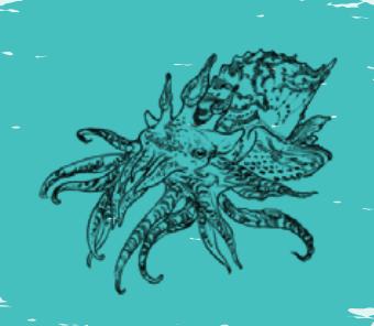 File:Sagittaria.png