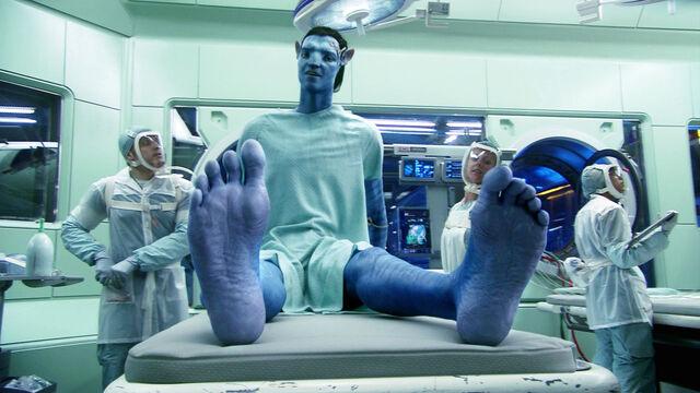 File:Jake wriggles his feet.jpeg