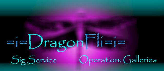 File:Dragonfli Banner Prototype.png