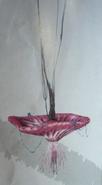 Panopyra