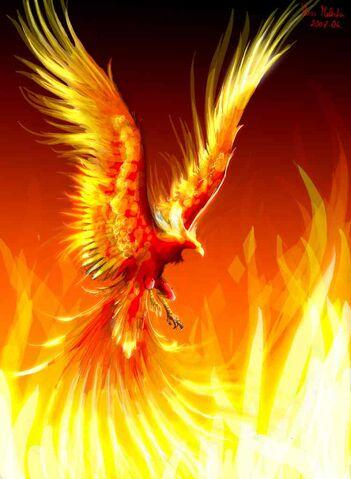 File:Firephoenix.jpg