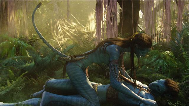 File:Avatar br 1526 20100520 1679440618.jpg