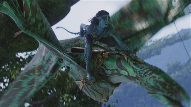 File:Neytiri.Flying.Hometree.screencap.jpg