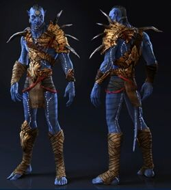 Nawma Taronyu Armor