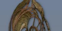 Na'vi Shield