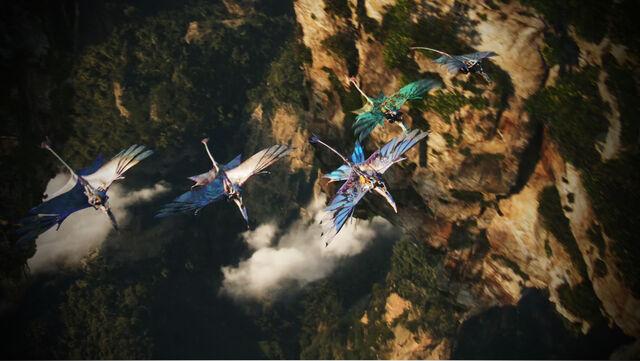 File:Jake's First Flight 2 HD.jpg