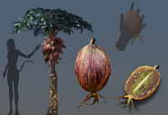 Melontree Concept