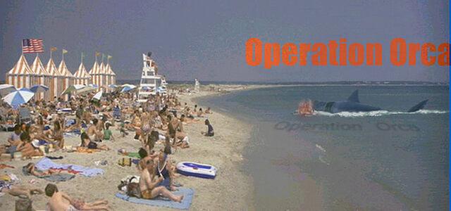 File:Kintner beach OO banner.jpg