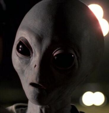 Grey Alien X-Files