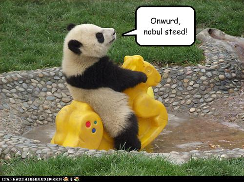 File:Cute panda lolcat noble steed rides horse playground funny.jpg