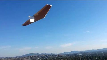 J-50 Sloping Sylmar 2013-11-02