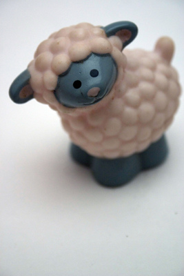 File:Cute sheep.jpg