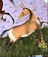 File:Akvan, The Onager-Div (The Shahnama of Shah Tahmasp).png