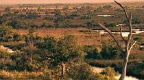 Texas killing fields image 1