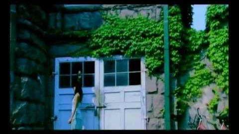 16號愛人 MV